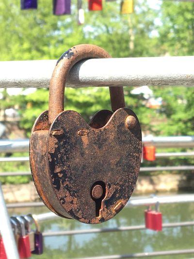 Close-up of padlocks on metal railing