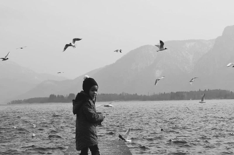 Lake Austria Blackandwhite Birds Cold Mountains Girl Elementpeople