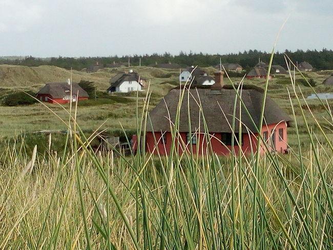 Dünen Strand Reetdächer Norden Husby