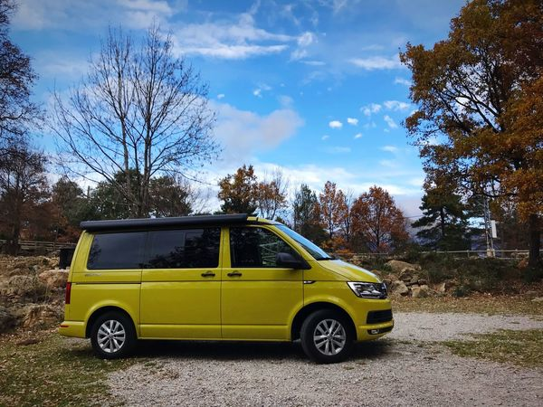 Beach #yellow #Iphoneography #vehicle #Adventure #california #Volkswagen #T6 Tree Sky Car Transportation Day Outdoors No People Nature