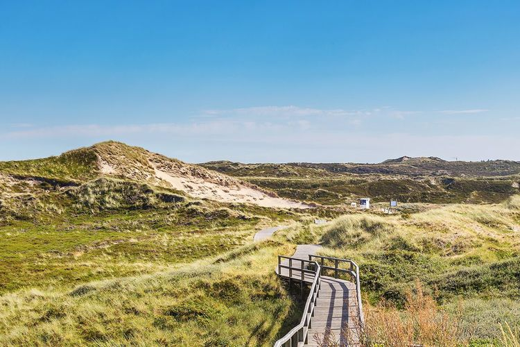 EyeEm Selects Mountain Tranquility Tranquil Scene Nature Landscape No People Scenics The Way Forward Day Outdoors Blue Grass Beauty In Nature Sky Clear Sky Dunes Sylt Buhne16 Sylt, Germany