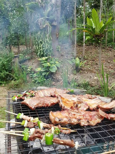 Barbecue Barbecue Grill Outdoors Meat Food Smoke - Physical Structure Nature Heat - Temperature No People Grilled Outdoor Foods Cooking In The Jungle