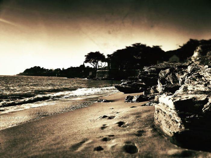 Taking Photos Beach Sun Enjoying Life
