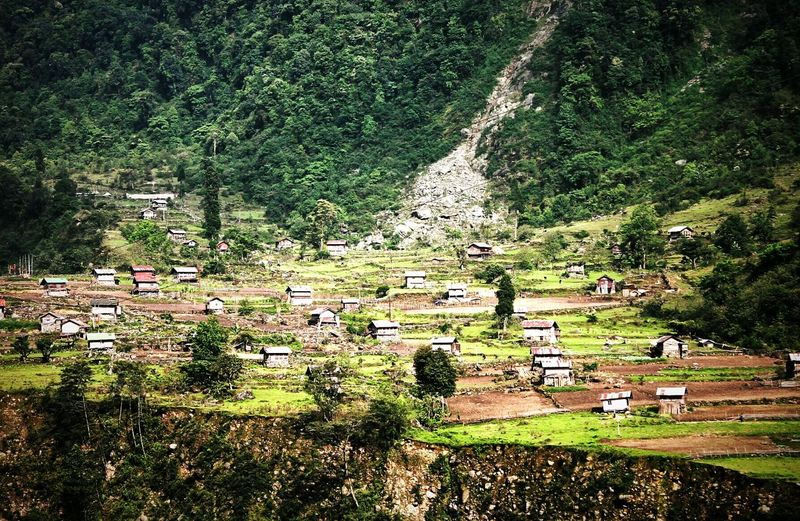 Houses On Hill Taking Nature Photos Beautiful Scene Beautiful Houses Plantation On Hills There Is Nothing Like Nature People Enjoying Living There Canon Eos 1100 D Taken In Sikkim, India InCreDiBle InDiA!! ☺☺😊😊😇😇