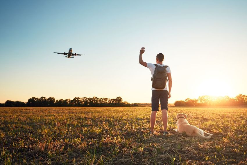 Saying hello at the sunset. Young man with his dog on the evening walk along the airport. Hello Landing Plane Sunlight Take Off Tourist Vacations Waving Aircraft Airplane Airport Dog Flying Goodbye Men Mid-air Nature Outdoors People Pets Sun Sunset Togetherness Tourism Welcome The Week On EyeEm