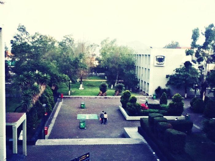 UNAM <3
