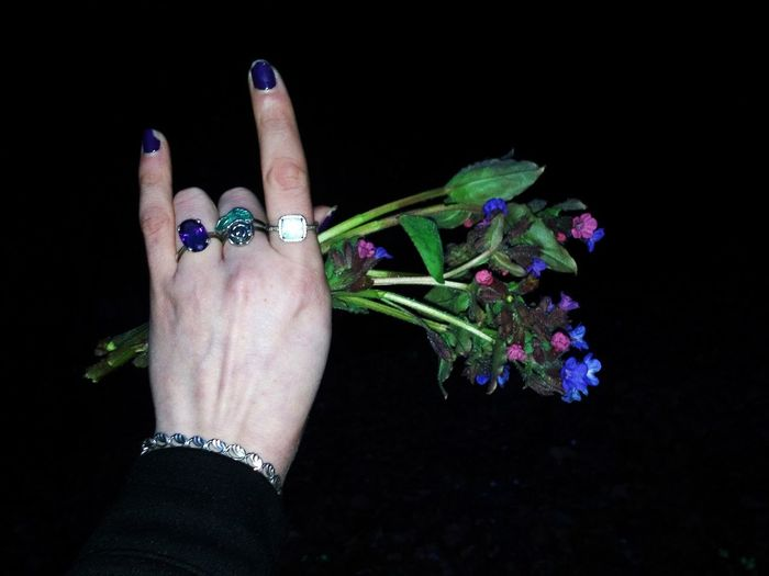 Close-up of hand holding purple flowers against black background
