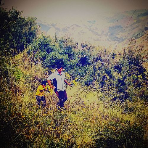 Peru Cusco Family Family Time Picking Flowers  Wildflowers Picking Wild Flowers Bringing Flowers To Mom Views From A Hike Sweet Kids Sweet Family Cute Kid What We Do When Mom Is At Work Spring Springtime Spring Flowers