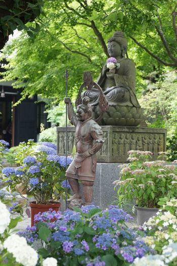 Kamakura*Japan