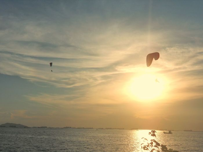 sundown Para Motor Sunset Hot Air Balloon Bird Flying Sunset Mid-air Adventure Sea Silhouette Parachute Sun Paragliding Skydiving Extreme Sports Water Sport Windsurfing Rock Climbing Shore Fly Gliding Stunt Streaming Parasailing Stunt Person Spread Wings