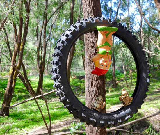 Upside down garden gnome and tire at the tourist driven Gnomesville forest in Western Australia. Close-up Colorful Ferguson Valley Figurines  Forest Garden Gnomes Gnomes Gnomesville Landscape Nature Non-urban Scene Outdoors Quirky Tourism Tourist Attraction  Travel Destinations Tree Trunk Trees Vibrant Color Wellington Mill Western Australia Whimsical WoodLand Woods