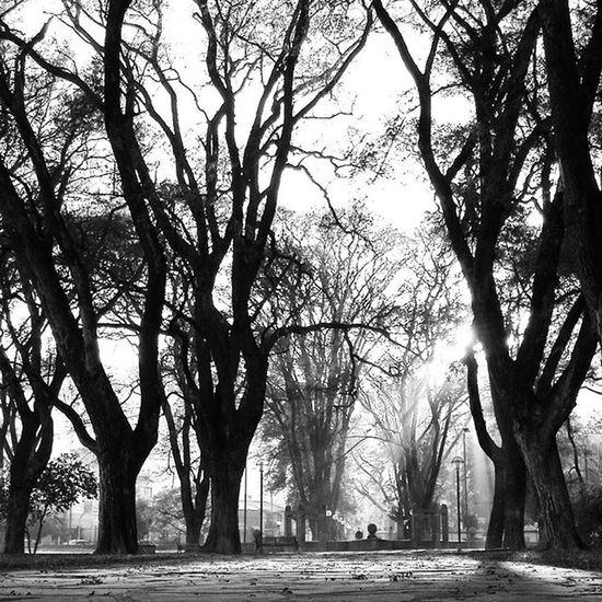 Parque  Sanmartin Salta  Argentina