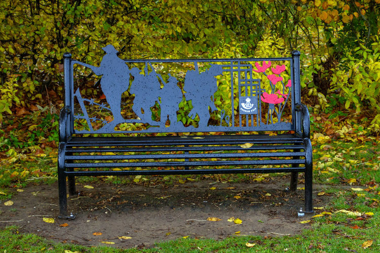 Bench Leaf Nature Plant Plant Part Seat Day No People Autumn Empty Land Tree Metal Absence Old Outdoors Park Wood - Material Change Yellow Park Bench
