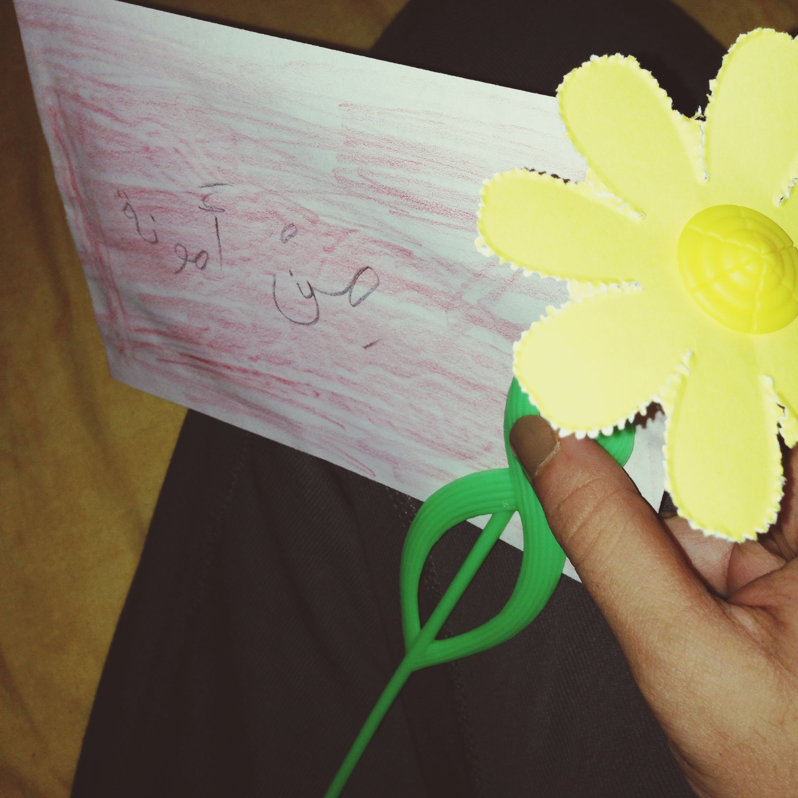 person, holding, flower, part of, cropped, freshness, indoors, yellow, personal perspective, lifestyles, close-up, human finger, unrecognizable person, fragility, leisure activity, petal, flower head