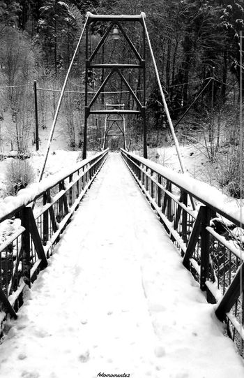 We build too many walls and not enough bridges ☆Isaac Newton☆ Monochrome Blackandwhite Nature Bridge Blackforest Favoritequotes Quotesaboutlife Picsart_family Quotesandsayings Snow Winter