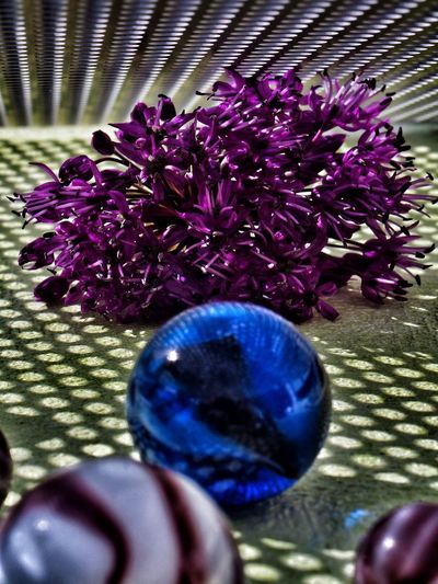 Modern Flower.. Eyeemphotography Fotografie Nature EyeEmNewHere Macro Fotografia Flower Purple Table Close-up Purple Color Flower Head Single Flower