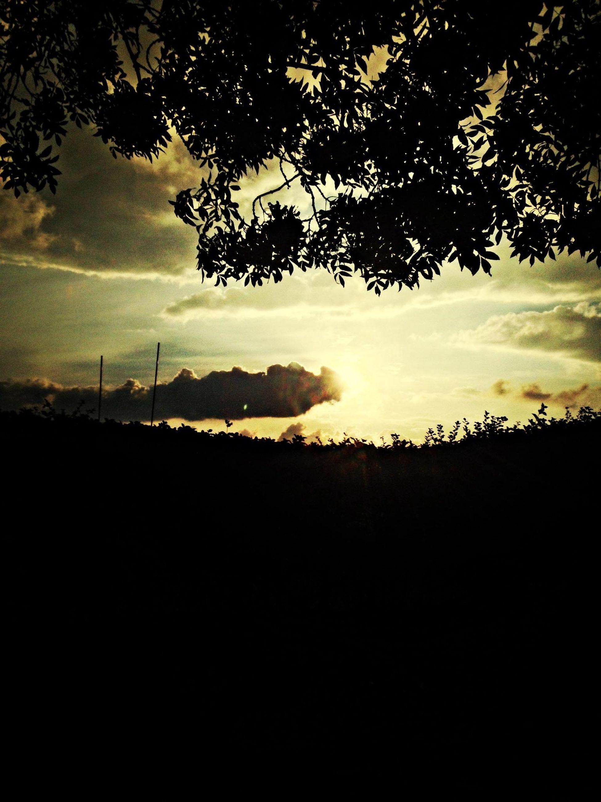silhouette, sunset, sky, tranquility, tranquil scene, scenics, beauty in nature, tree, cloud - sky, landscape, nature, dark, cloudy, idyllic, field, dusk, electricity pylon, weather, cloud, outdoors