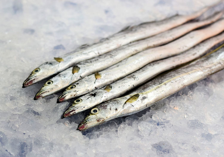 Close-up of dead fish on ice for sale at market