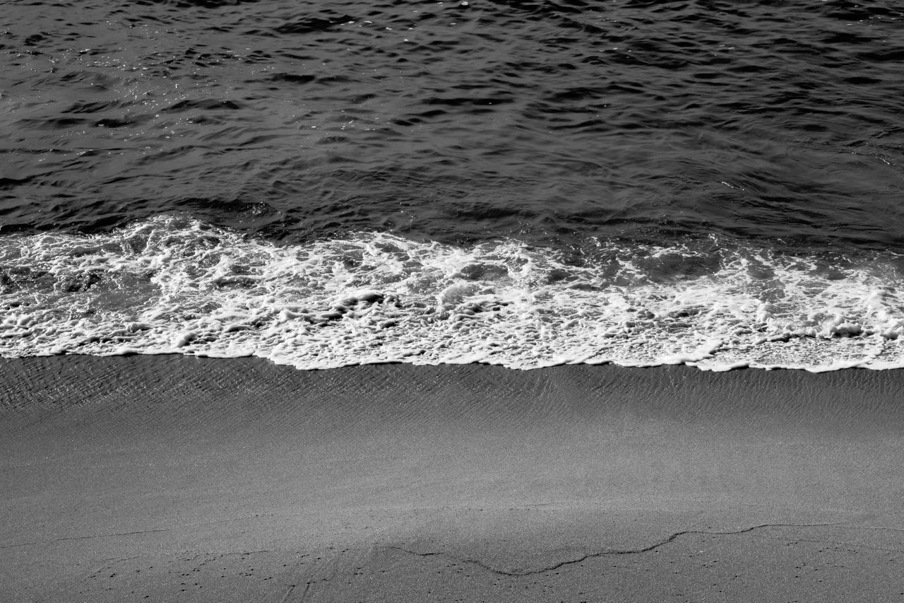 wave, sea, water, motion, nature, no people, beauty in nature, beach, outdoors, day, sand, power in nature, force