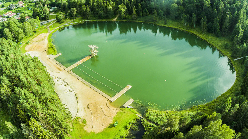 Aerial Photography Aerial View Beach Day Dronephotography Forest Forest And Lake Green Color High Angle View Lake Landscape Nature Nature No People Outdoors Tower Tree Trees Water