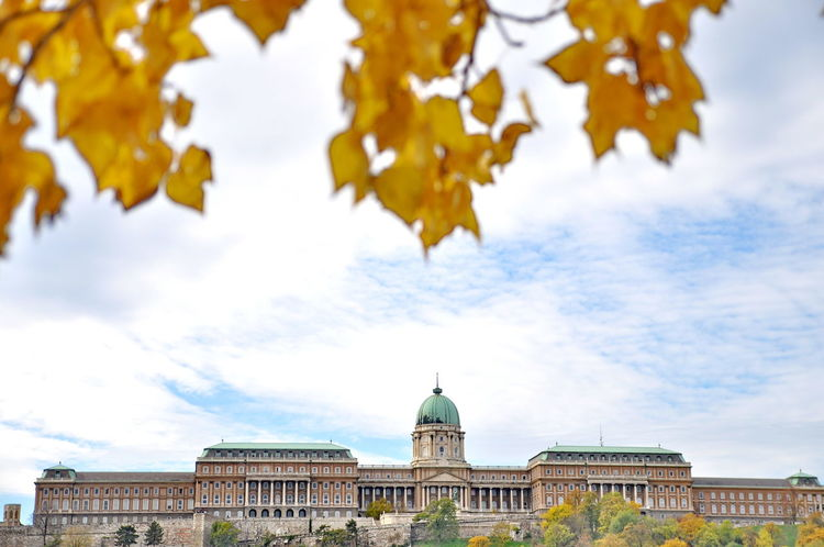 Architecture Autumn Beauty In Nature Blue Budapest Built Structure Cloud Cloud - Sky Cloudy Day Focus On Foreground Green Color Growth High Section Low Angle View Nature No People Outdoors Sky Tree