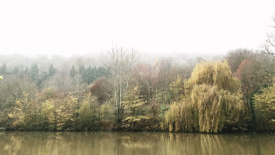 Berkshire Berkshire Goring And Streatley Wild Nature Landscape_Collection England Landscape Winter Autumn West Berkshire Landscapes With WhiteWall