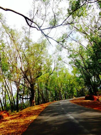 """""""A long way to go"""" Road Trip Roadside Road To Nowhere Road In Nature Road Photography Road Photo Road Photoshoot On The Road EyeEm Best Shots Weekendtrip"""