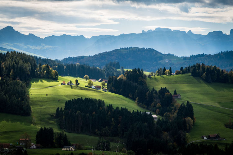 hills of appenzell Alpstein Farm Hills Alps Appenzell Beauty In Nature Cloud - Sky Day Europe Field Green Color House Idyllic Landscape Nature No People Outdoors Rural Scene Scenics Sky Switzerland Teufelsberg Tranquil Scene Tranquility Tree Perspectives On Nature