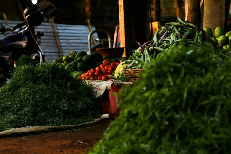 sabji mandi Foods Sabji Sabjimandi Market Food And Drink Healthy Eating Freshness Vegetable Wellbeing Fruit Day Selective Focus Green Color Agriculture Outdoors Nature No People Basket Sunlight Container Growth Organic Plant