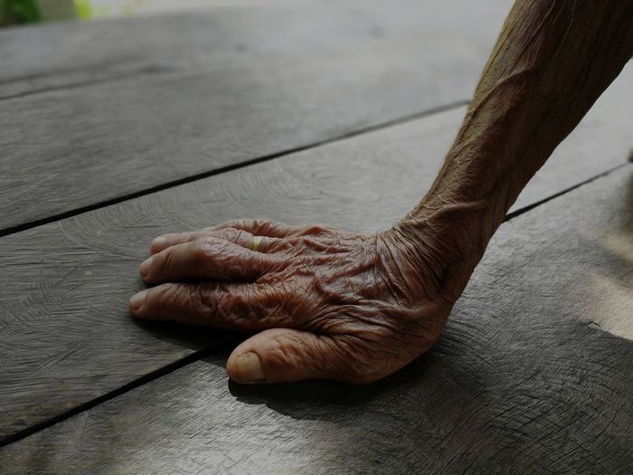 Close-up of person hand holding wood