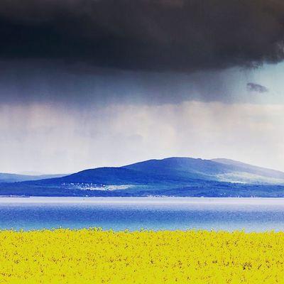 Yer gök sarı lacivert.... Fenerbahce  Fenerbahce  1907 Sarikanarya sarilacivert fenerinmacivar yikilmayansonkale fenerbahçem
