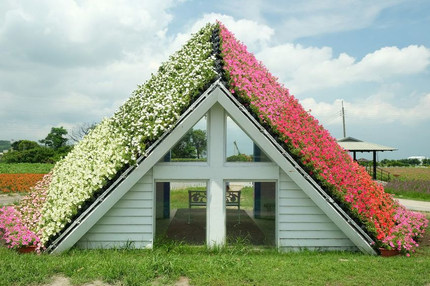 Flower Triangle Shape Building Exterior Architecture Built Structure Nature Flower Arrangement Home Sweet Home Flower House House Of Flowers Garden Flowers Garden Decoration Garden Architecture Garden Art Garden Decor Flower Pot Flowers In My Garden