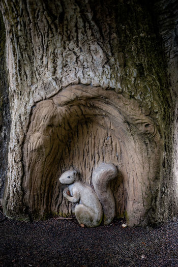 The Forest themed Playground in Rumah Tinggi Eco Park in July 2018. This squirrel hanging out at the tree. He's hidden somewhere in this playground too! Just like the raccoon. :) Forest Playground Public Park Squirrel Themed Playground No People Public Places Public Playground Sculpture