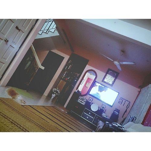Bosann Ruangtamu Pintu Kucing Tv cermin.
