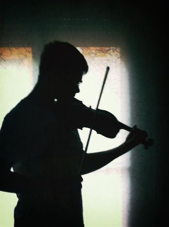 Violin Life In Motion