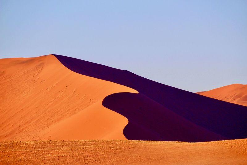 Sand Dune Sand