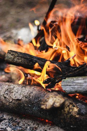 Close-up of bonfire on wood at night