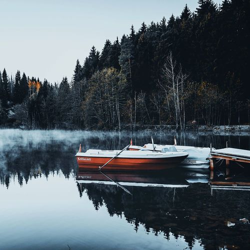 Morning mist Nature Landscape Turkey EyeEmNewHere Water Tree Nautical Vessel Plant Transportation Mode Of Transportation Nature Lake Sky Reflection Beauty In Nature Moored No People Day Waterfront Scenics - Nature Outdoors Growth Tranquility
