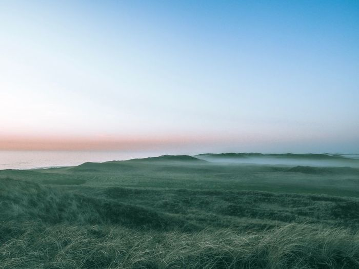 Fog in the dunes at sunset Dunes Oceanside Klitmøller Foggy Landscape Foggy Sunset Fog Northsea Ocean Sky Scenics - Nature Tranquil Scene Tranquility Beauty In Nature Landscape Environment Nature Land Plant No People Copy Space Idyllic Non-urban Scene Field Grass Clear Sky Growth Horizon