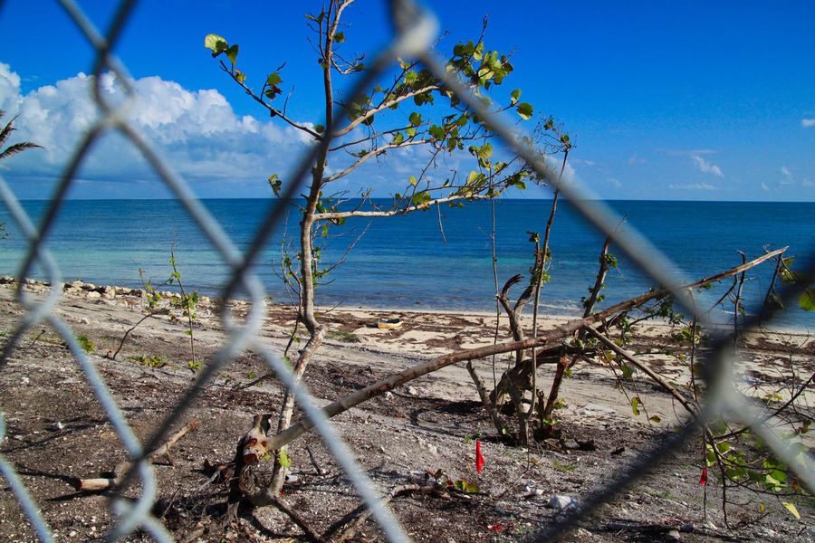 View behind fence of aqua colored waters of Atlantic Ocean in Florida Keys. Beach was destroyed in Hurricane Irma 2017 and is in recovery. Atlantic Ocean Destruction Hurricane Irma 2017 Beach Beauty In Nature Blue Branch Chain Link Day Destroyed Florida Keys Horizon Over Water Natural Disaster Nature No People Outdoors Rubble Scenics Sea Sky Torn Up Tranquility Tree Water Waterfront