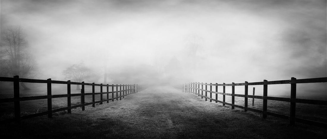 Heading Into The Unknown Check This Out EyeEm Best Shots NEM Submissions EyeEmBestPics Blackandwhite Ireland Fog Winter