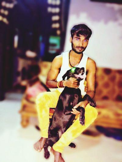 One Person Pet Doglover Black Labrador Black Colour Dog