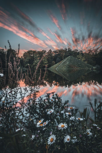 Pyramids Beauty In Nature Cloud - Sky Lake Sunset Outdoors Tranquility Plant No People Summer Travel Destinations Wanderlust Pyramid Architecture Reflection Long Exposure Motion Movement Blossom Flower Water Nature Park Forest Island Exploring