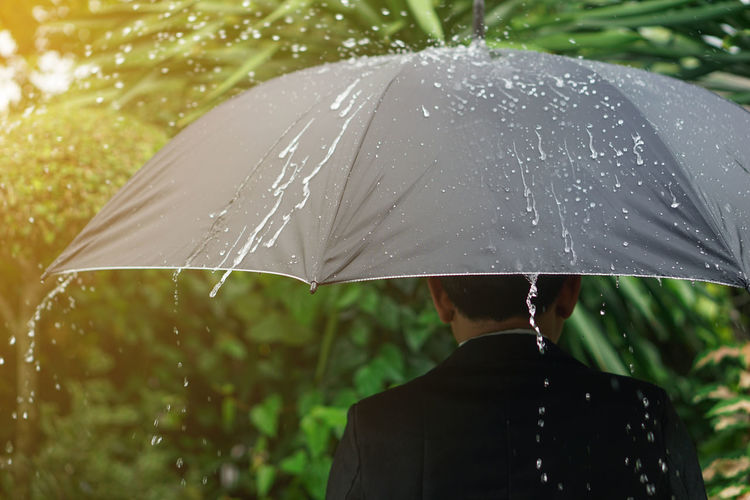 Rear view of man with umbrella in rain