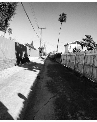 Cali Alley Street Art No People Outdoors First Eyeem Photo The Street Photographer - 2017 EyeEm Awards