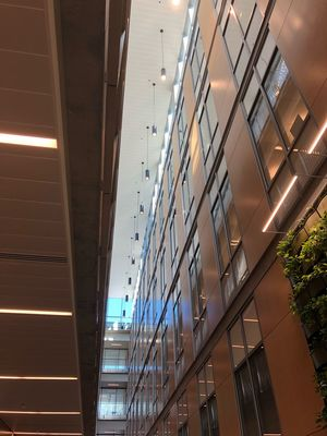 Architecture Building Exterior Built Structure Building Nature Low Angle View No People Window Reflection Glass - Material