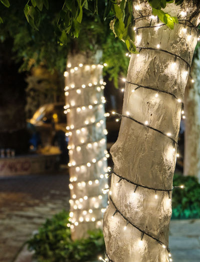Sit Vintage Background Blurry Party Light Dining Outdoor People Blurred Customer  Table Counter Design Coffee Hipster Color Retro Interior Decoration Patio Holiday Family Celebrate Cafe Food Restaurant Blur Gold Dinner Lifestyle Business Night Modern Bar City Pub Chair Abstract Drink Dark Festive Relax Shop Outside