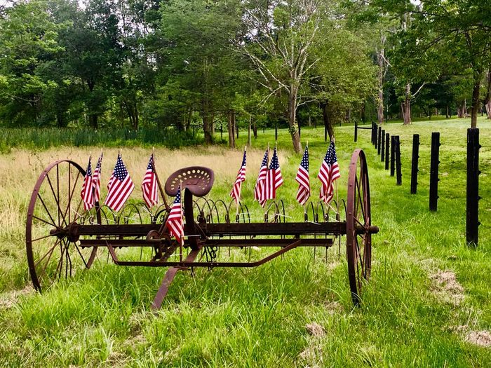 Farming in America Grass Tree Green Color Day Outdoors Growth Nature No People Farm Tools American American Flag Countryside Country Life Breathing Space