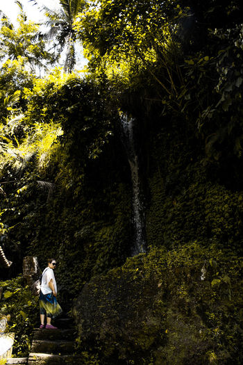 Bali, Indonesia Tree Plant One Person Nature Real People Beauty In Nature Forest Day Green Color Casual Clothing Women Adult Outdoors Flowing Water Waterfall Jungle