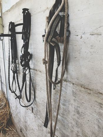Riding Horseback Equipment Horse EyeEm Selects Wall - Building Feature No People Bicycle Day Transportation Architecture Built Structure High Angle View Communication Outdoors Wall Metal Still Life Text Sign City Mode Of Transportation Land Vehicle Footpath Sunlight